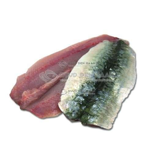 Sardine filet